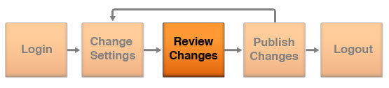 API Work Flow - Review Changes