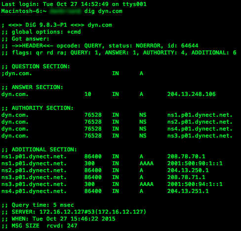 How to use BIND's Domain Information Groper (dig) Tool | Dyn
